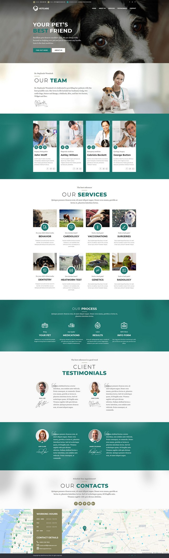 health and medical wordpress theme Medicare homepage layout for vet